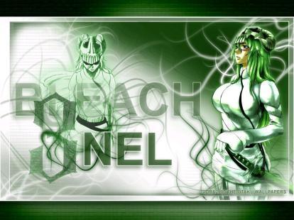 bleach-nel