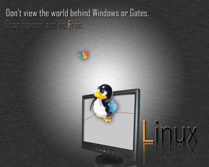 linux___flyswater_by_nicr0053098