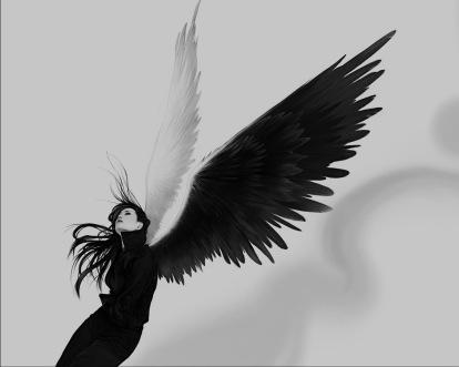 dark-angel-37616-188543