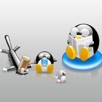 Faut-il être un OVNI pour utiliser Linux ?