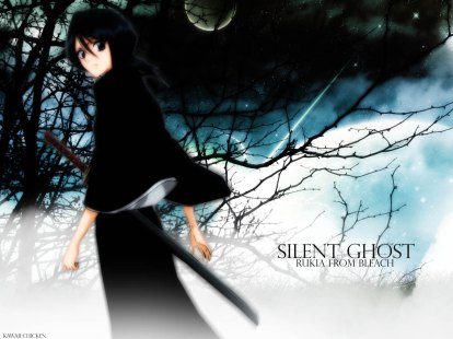 bleach - silent ghost