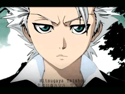 1179607999_Hitsugaya-Taishou2