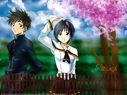 suzuka-yamato-cerisier-269857544