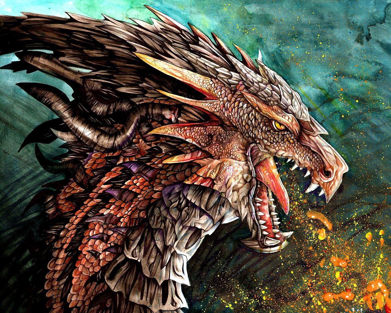 Dragon photo 47