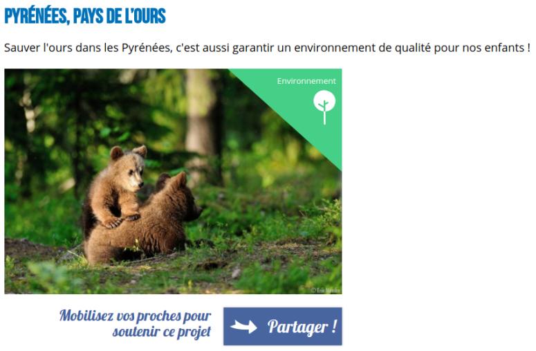 Pyrénées-Pays de l ours