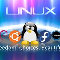 Acheter un ordinateur pré-installé sous Linux ou sans OS