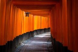 ttucker_japan