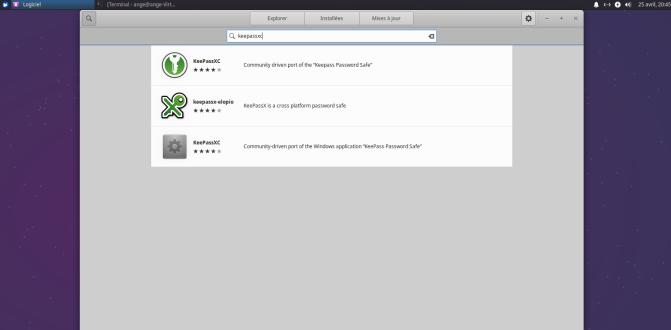 Xubuntu-icone-manquante