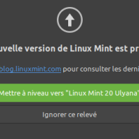 Linux Mint - Migration de la version 19.3 vers la version 20