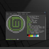 Linux Mint 20 Xfce - Présentation et avis
