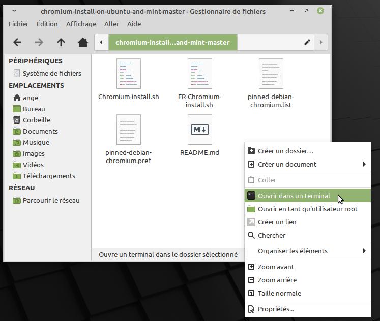 Mint-Chromium-script-open-terminal